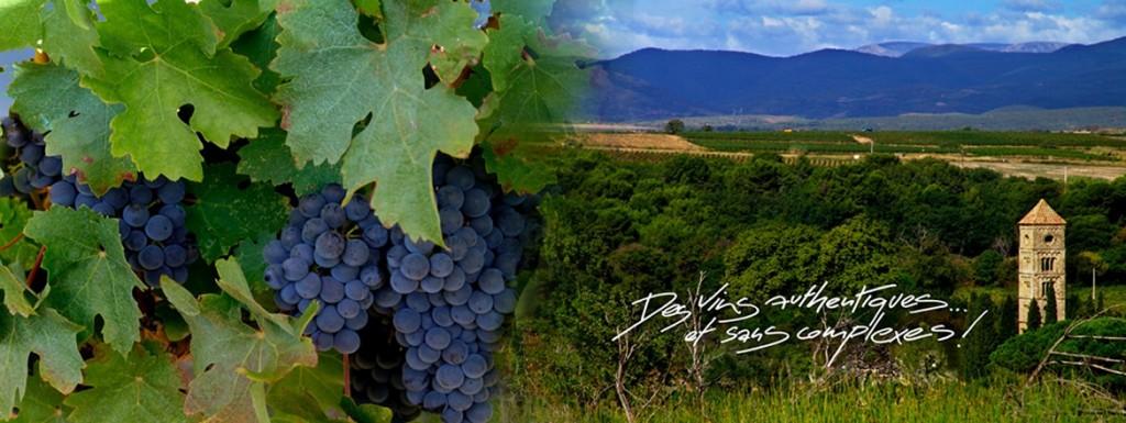 Domaine Bassac Wine